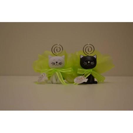 Chat mix noir et blanc prix pour 2 chats